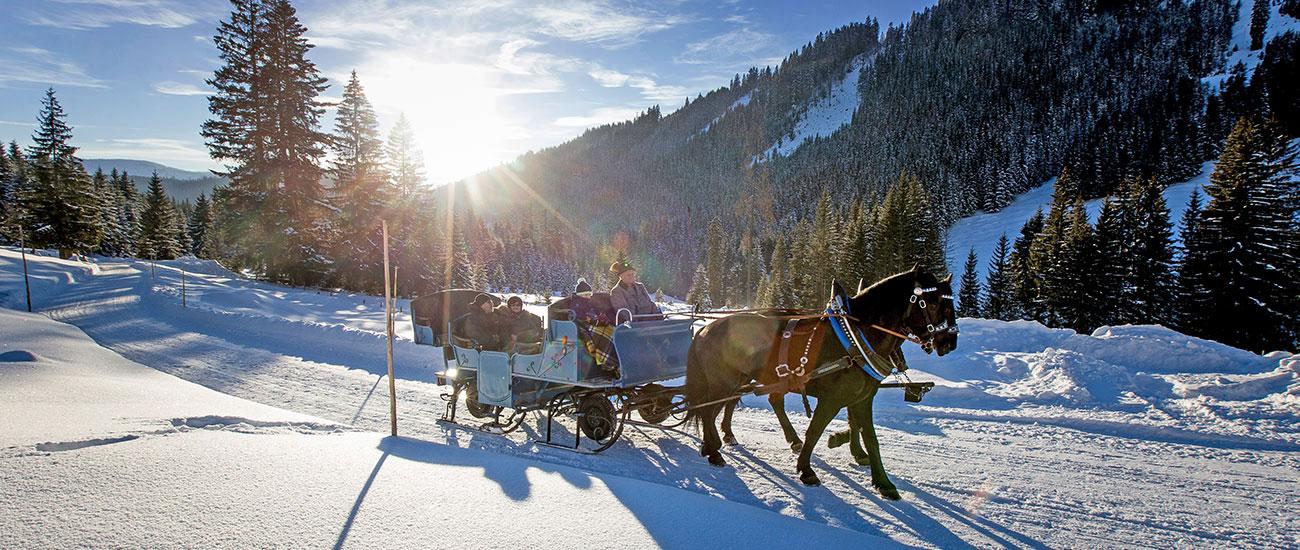 Pferdeschlittenfahrten - Winterurlaub in Filzmoos