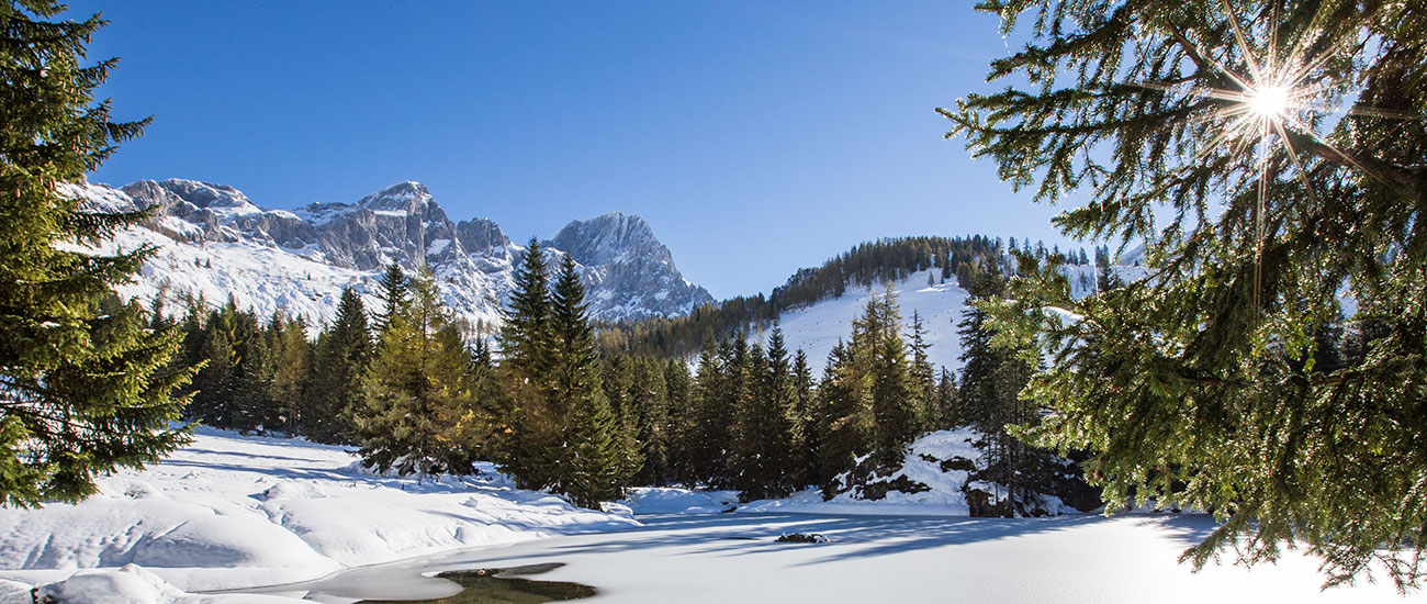 Winterurlaub in Filzmoos, Ski amadé